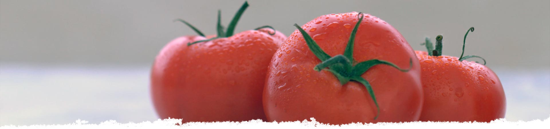 Pick the Perfect Tomato