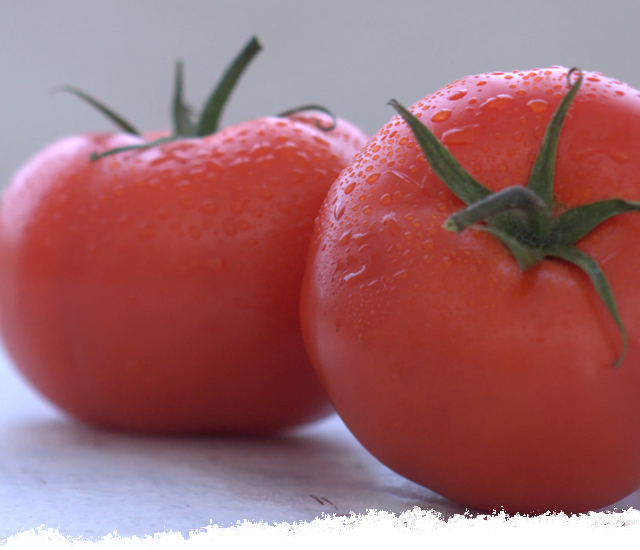 Pick the Perfect Tomato