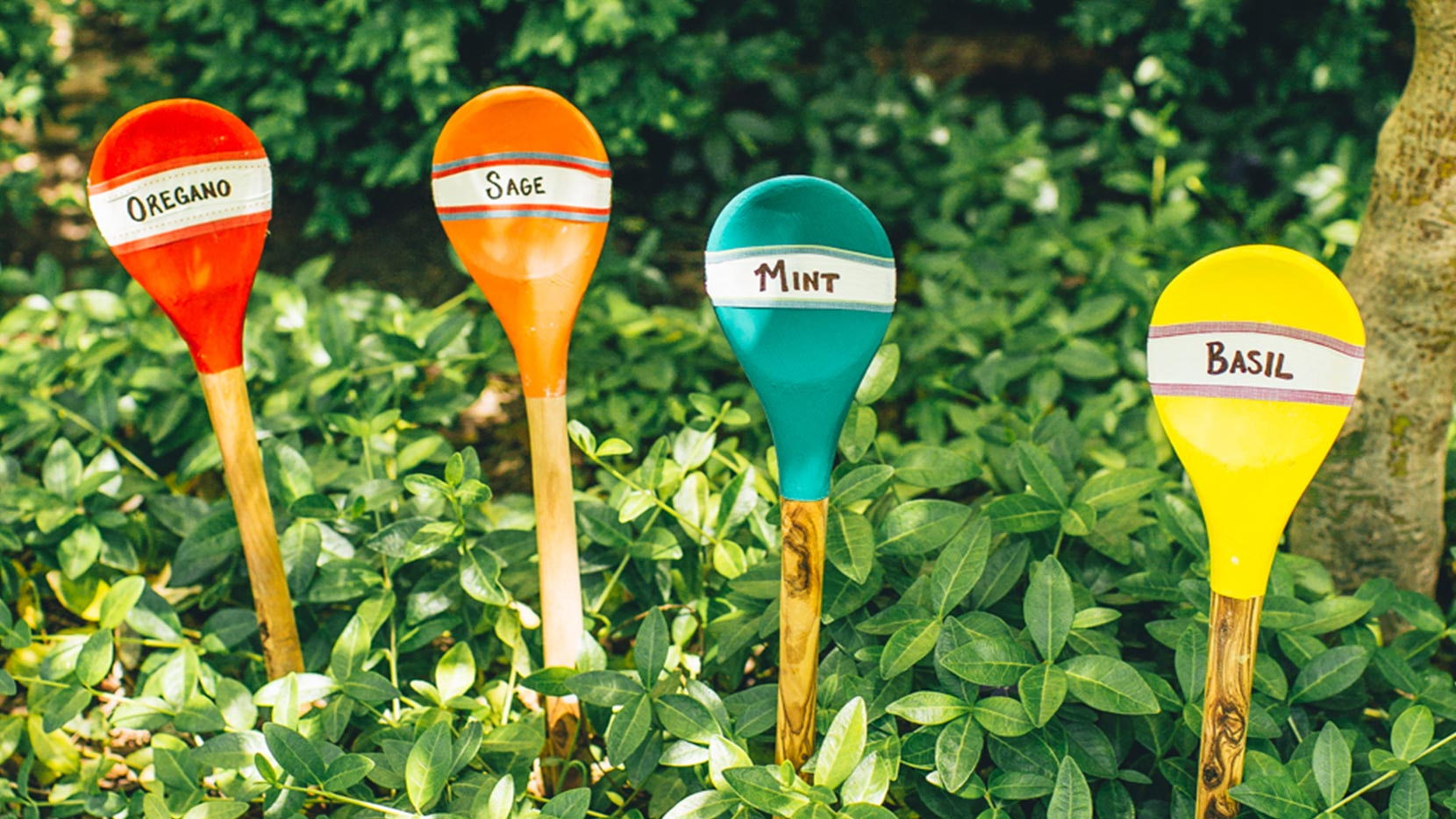 Place wooden spoon in garden next to its corresponding herb