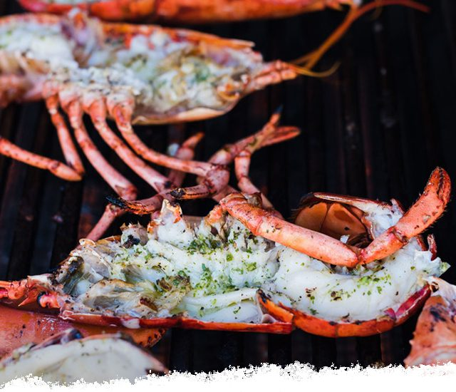 Chimichurri Grilled Lobster